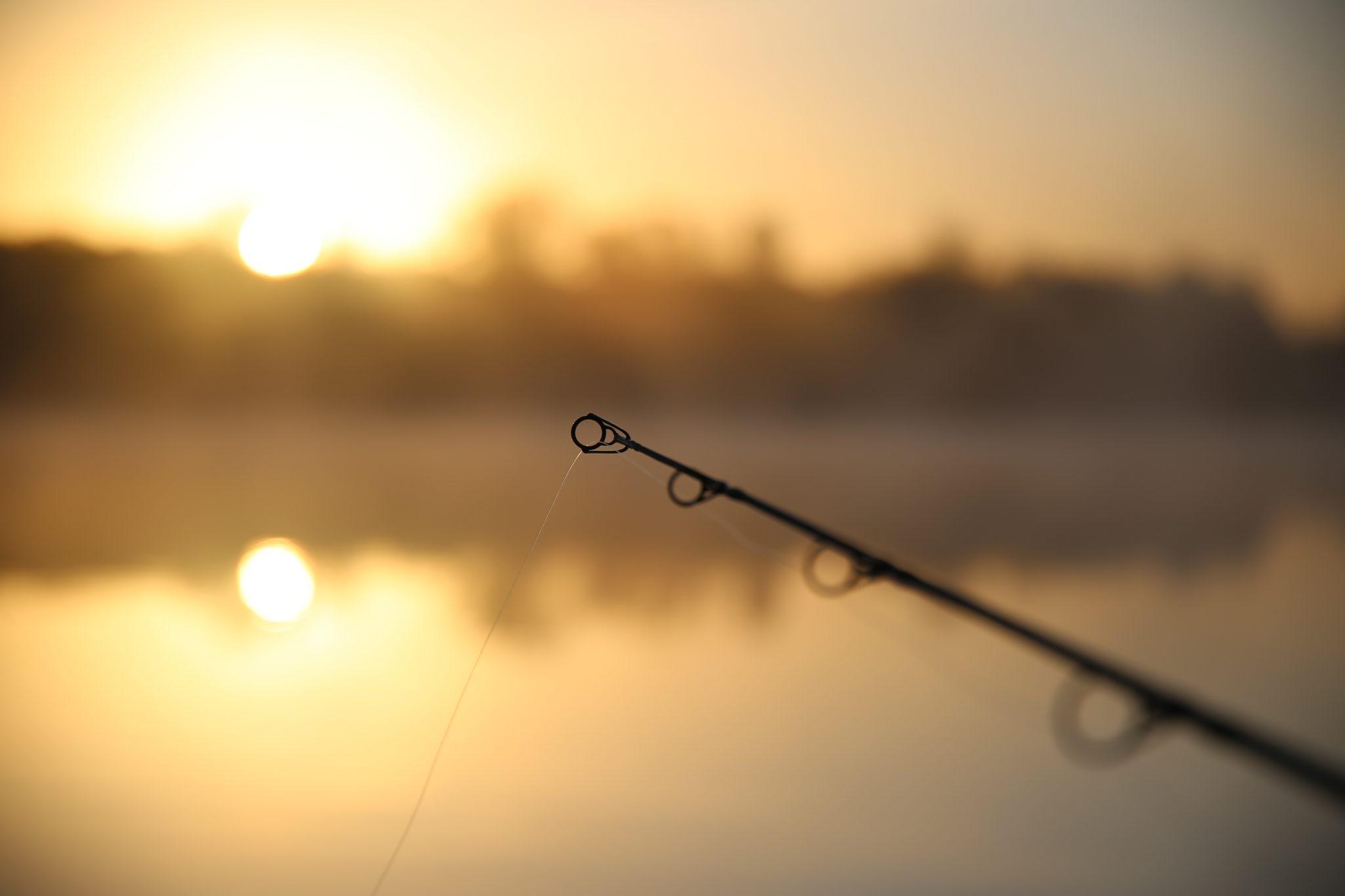 Aankomende periode vis ik weer 3 nachten per week. De drang om naar het water te gaan is groot