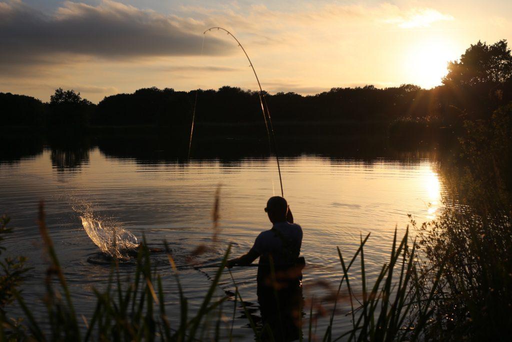 Laat de vis zichzelf moe maken en wacht tot het goede moment.
