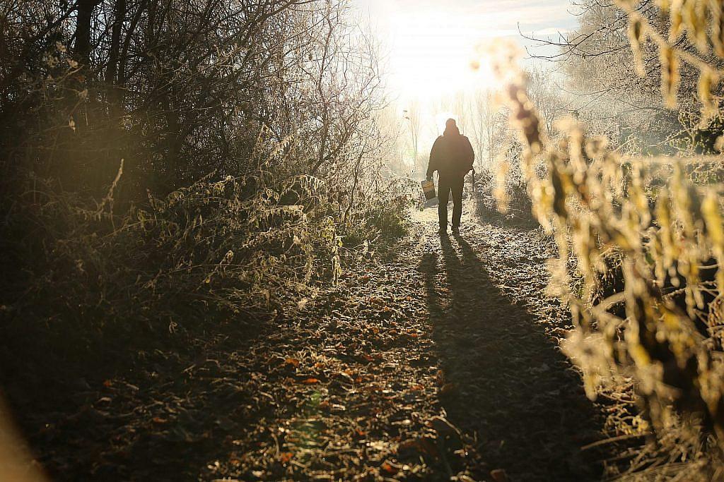 Dagelijks voeren vergroot je kansen in de winter aanzienlijk.