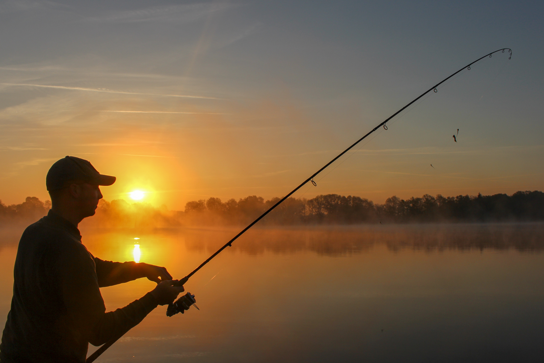 Helemaal tijdens de eerste uurtjes zal de vis elk geluid duidelijk horen.