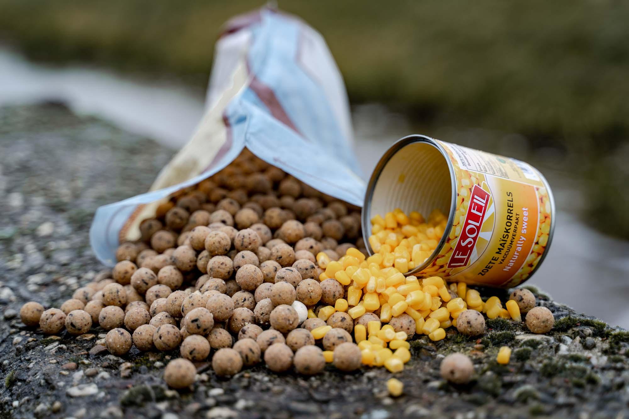 Zachte zoete mais als ondersteuning voor boilies. Het is letterlijk een gouden combinatie in de winter