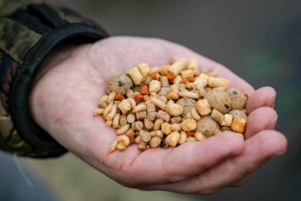 Maden, pellets en kleine boilies zijn favoriet